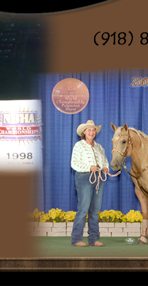"Mary and LR Frenchmans Gift ""Snickers"" top 5 Palomino World Show"